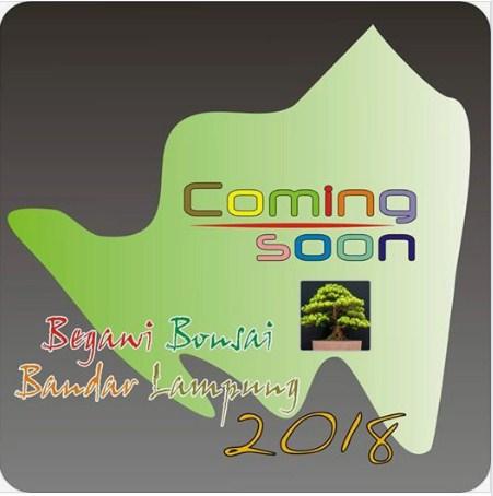 Pameran Bonsai Nasional Desember 2018 ( Begawi Bonsai ) Di Bandar Lampung