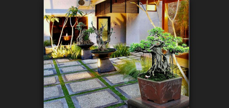 Ragam Taman Minimalis Sederhana Cocok Untuk Hunian Yang Mungil