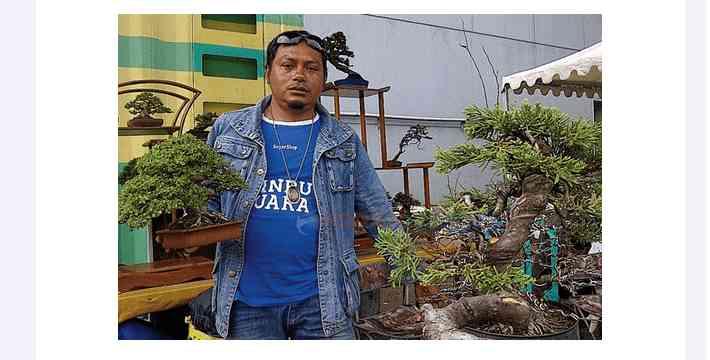 Harga Bonsai: Modal 250 Ribu Dijual Ratusan Juta Oleh Ivan Doeloer